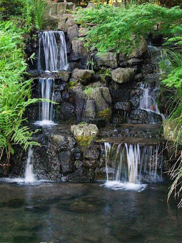 Jardin japonais org collection photo pour la creation for Creation jardin japonais