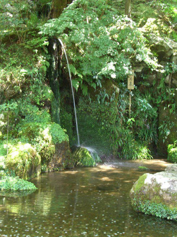 Design bassin japonais avec cascade saint paul 2121 saint paulien basket saint paul en for Jardin japonais angers