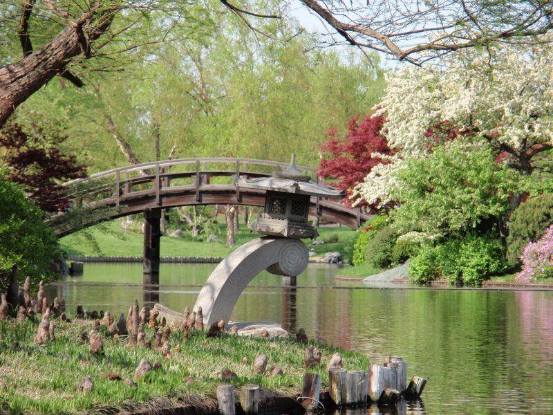 Jardin japonais org collection photo pour la creation de jardin japonais - Bassin jardin preforme saint paul ...