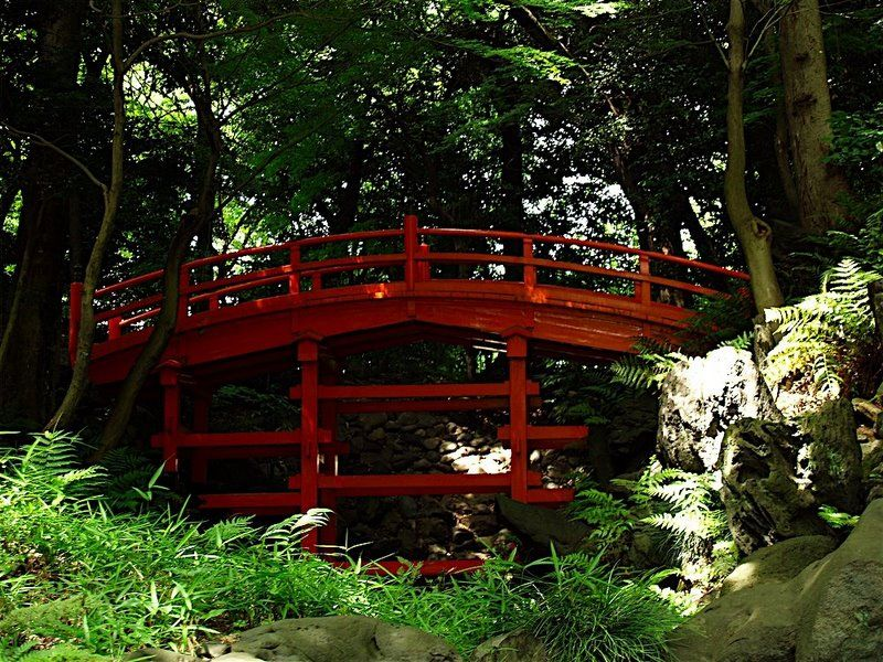 Creation jardin japonais for Creation jardin