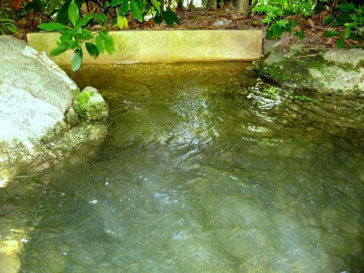 Bassin aquatique photo de bassins aquatiques - Bassin aquatique contemporain calais ...