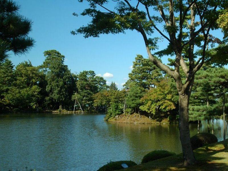 D Co Bassin Jardin Japonais 36 Vitry Sur Seine Vitry Sur Seine Bassin