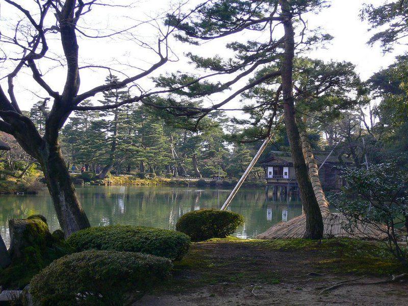 D co bassin aquatique japonais 22 bassin - Bassin japonais dessin dijon ...