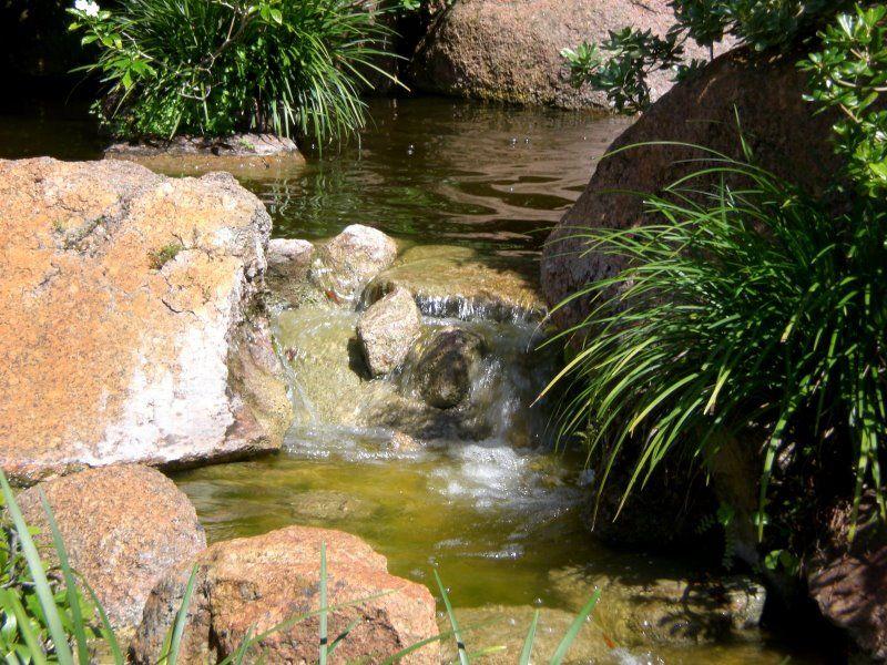Design bassin jardin japonais saint paul 13 les jardins japonais bassin jardin zen - Bassin jardin preforme saint paul ...