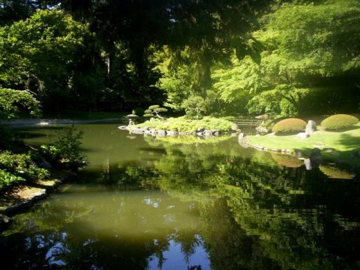 bassin du jardin nitobe garden universit de la colombie britannique. Black Bedroom Furniture Sets. Home Design Ideas