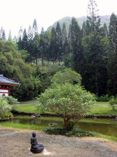 Jardins japonais de kyoto jardin du temple byodo in for Jardin kyoto